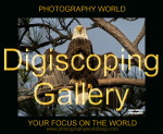 Eagle DIGISCOPING GALLERY PW