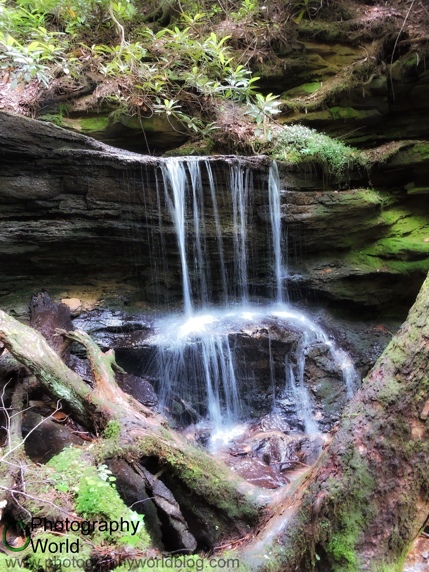 © Waterfall. Red River Gorge, KY. Photograph by Mina Thevenin. Photography World. www.photographyworld.org