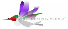 © Hummingbird and Photography World TM. www.photographyworld.org