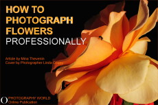 ©How to Photograph Flowers Professionally. Cover for Photography World article.