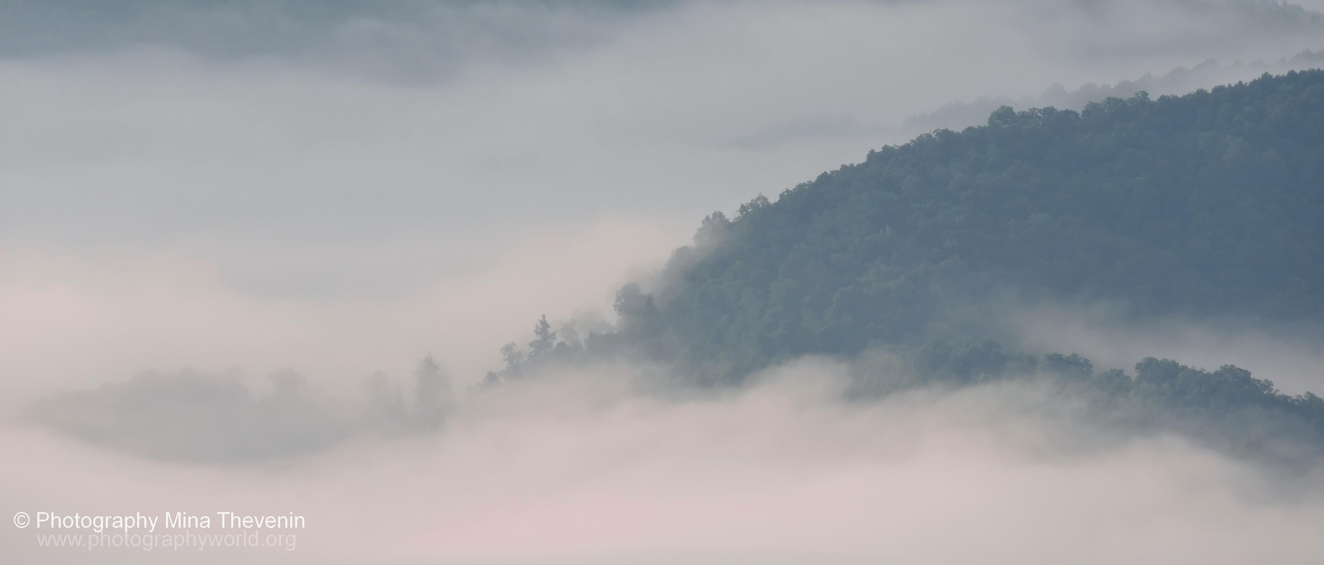 "© Fog over NC Appalachia. Photograph by Mina Thevenin. Photography World article: ""APPALACHIAN TRAIL|Take a Walk on the Wild Side|Nantahala|Tellico Gap to Wayah Bald"" photographyworld.org"