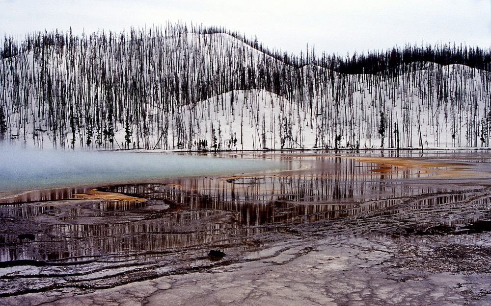 Grand Prismatic Spring - Silica Terraces. Hot Springs, Midway & Lower Geyser Basin. Photo credit Bob Lindstrom. May 1996