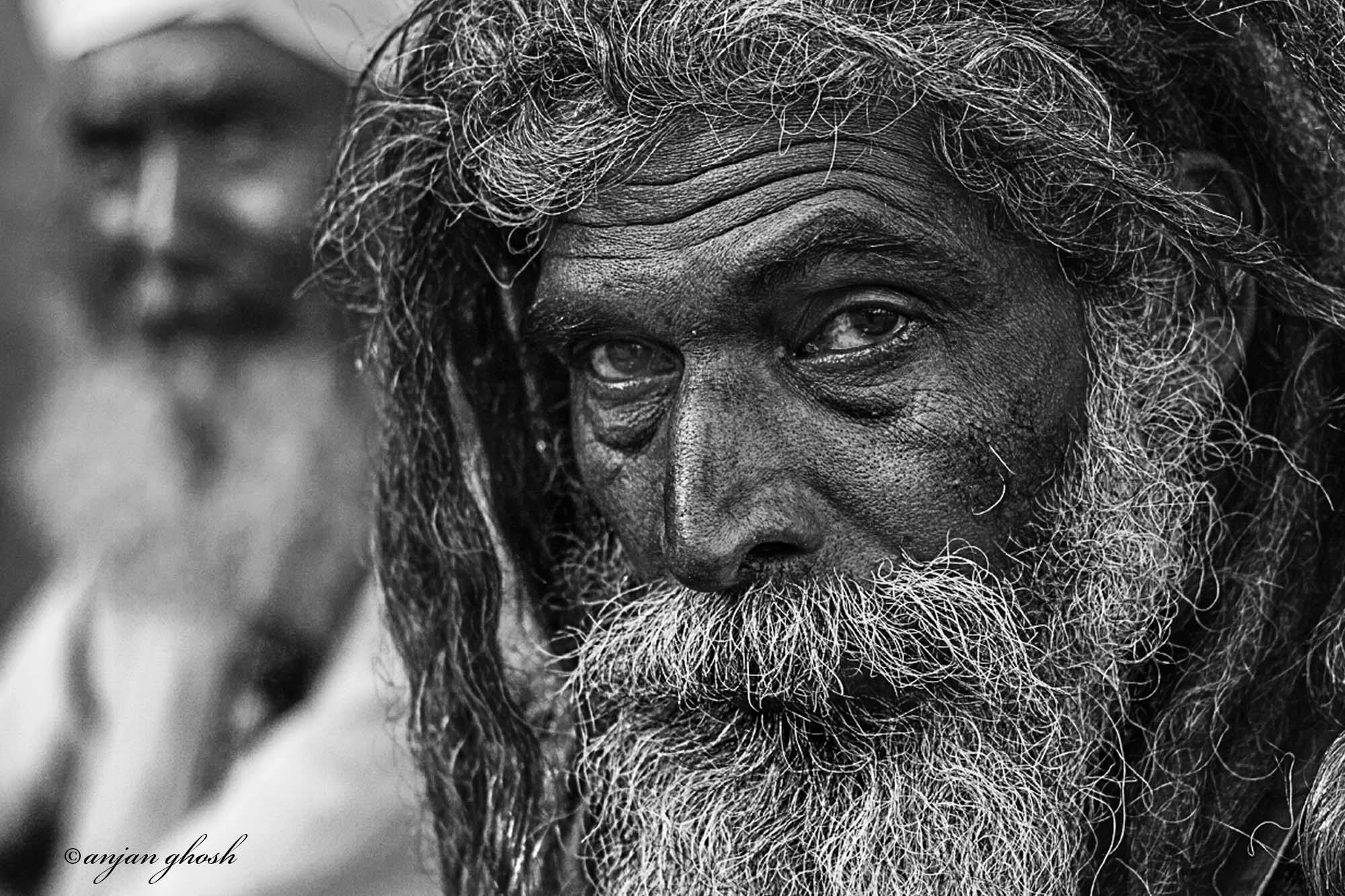 Gangasagar Pilgrim, India. Copyright Photograph by Anjan Ghosh
