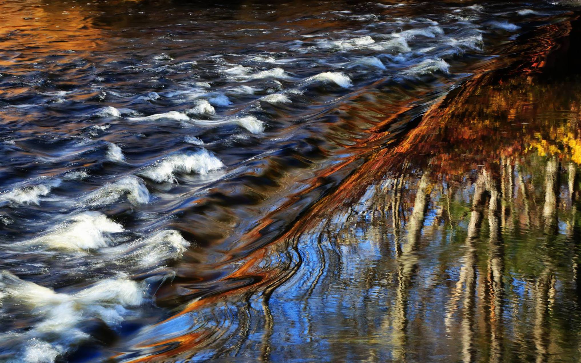 © Water Reflections. Photographer Nelin Reisman. Winning 2015 Photograph of the YOUR FOCUS ON THE WORLD Photography World Contest @ photographyworld.org